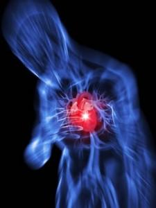 الجلطات القلبية اسبابها  وقت حدوثها و كيفية اوقاية منها