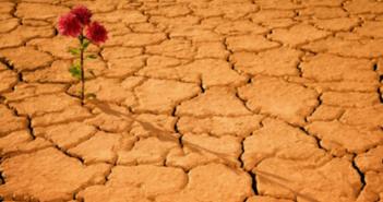 جفاف المهبل أسبابه وعلاجاته