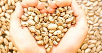 10 طرق للحفاظ على صحة القلب