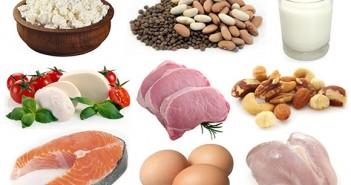 الدهون والبروتينات والكربوهيدرات