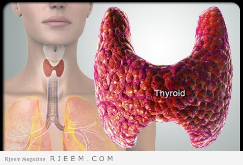 Thyroid-2