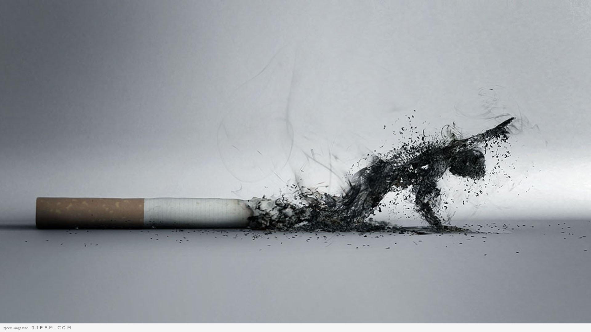 quitsmokingcommunity.orgsmoke smoke acd2ef55a60def87751b6a3bf5b3431ddc9fe326