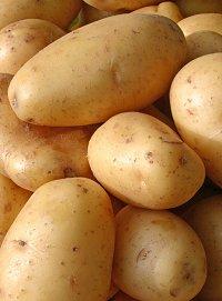 Photo of البطاطا واستعمالاتها العلاجية