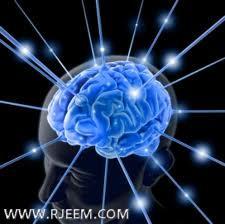 Photo of المخ و علاقته بالاصدقاء