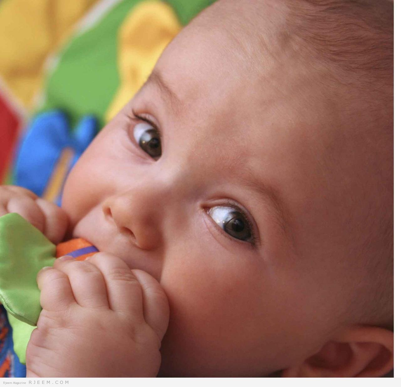 Photo of اكتشفي أهمية الجزر لرضيعك