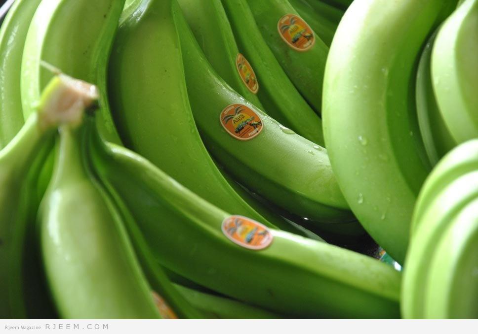 Photo of الموز الأخضر للخسارة الوزن