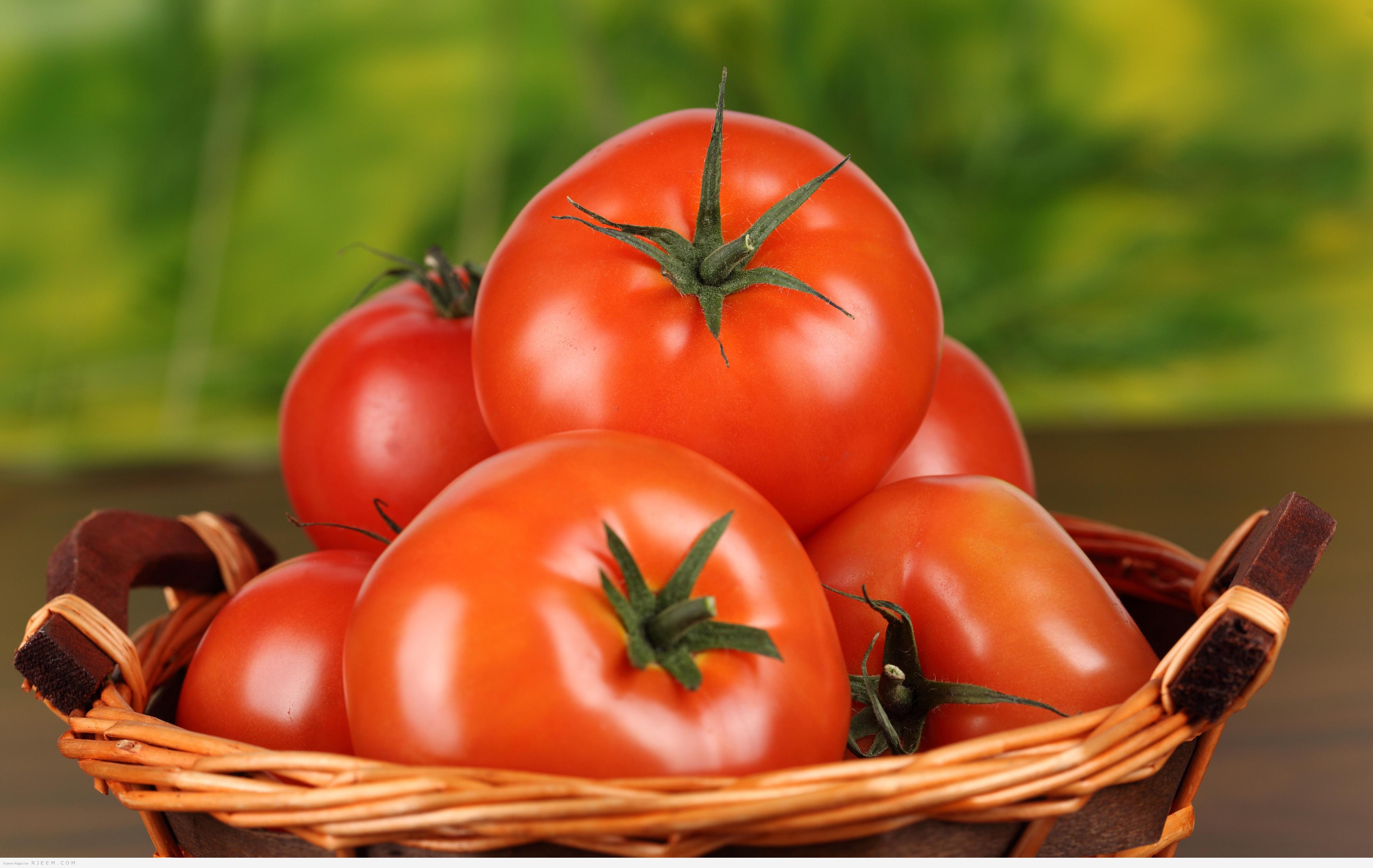 Photo of 6 اسباب للاكثار من تناول الطماطم
