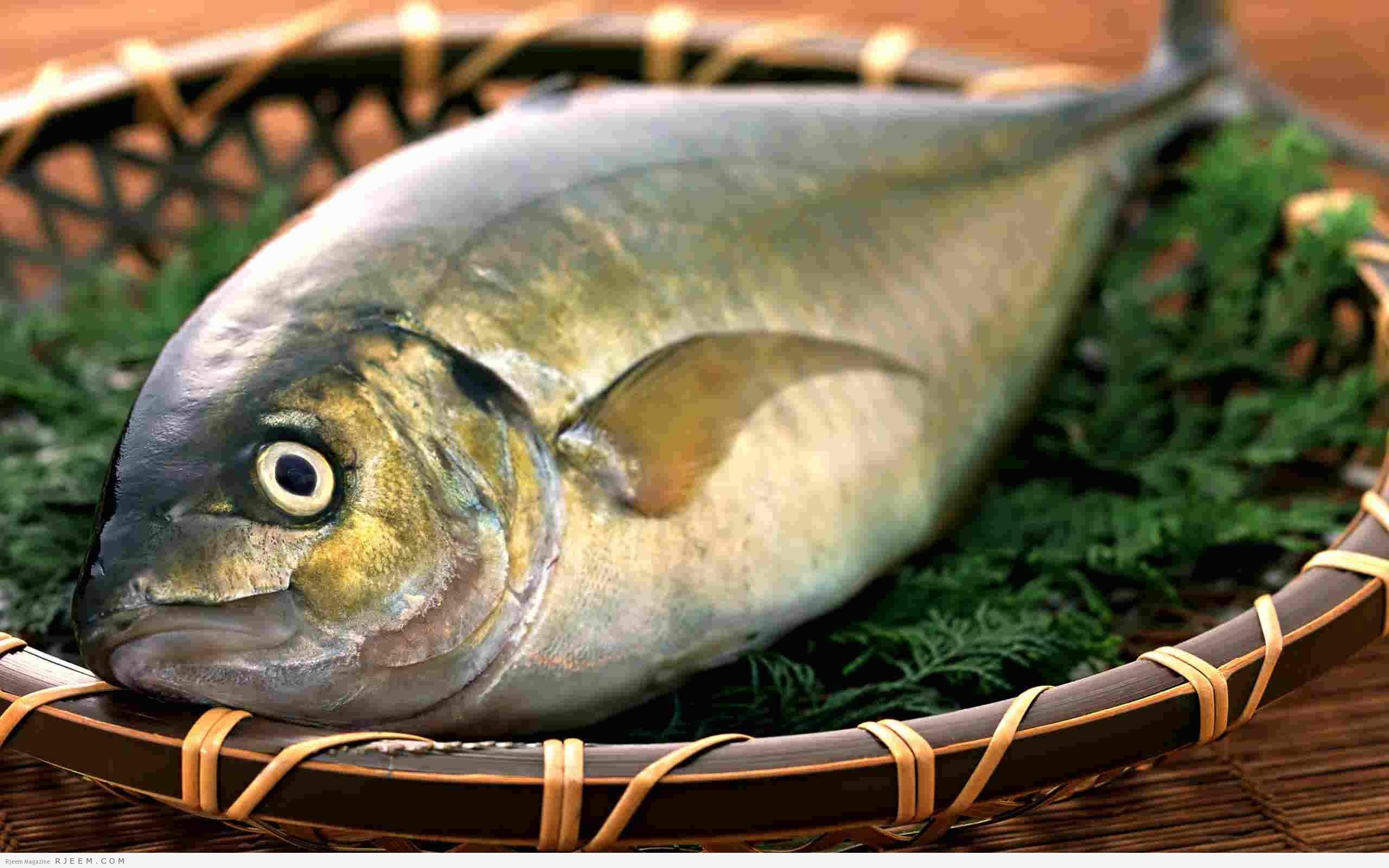 Photo of أكثر من 8 فوائد للسمك