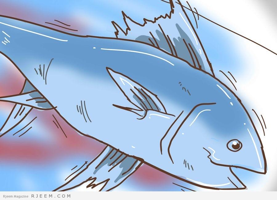 Photo of معلومات عن سمك التونة