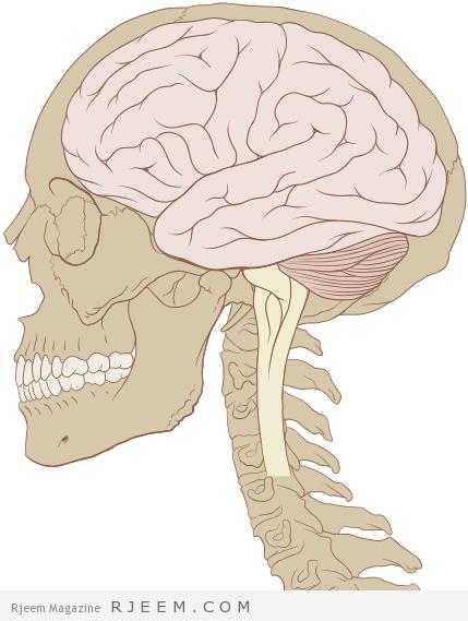 Photo of الوقاية من السكتة الدماغية