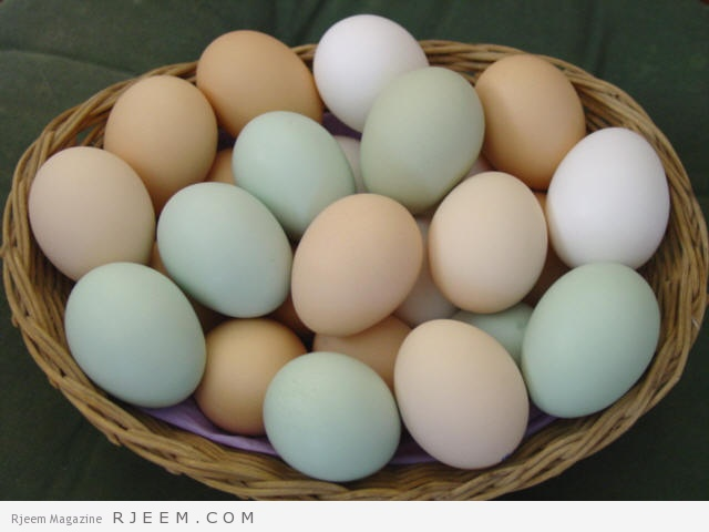 Photo of وصفات البيض لبشرة نقية