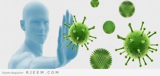 Photo of أفضل المواد الغذائية لرفع مناعة الجسم