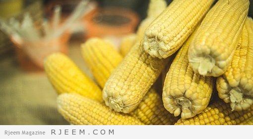 Photo of الذرة بالفوائد عامرة ..بلونها مصفرة..