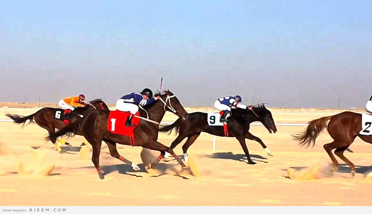 Photo of بالفيديو.. طفل ينجو من الموت في سباق للخيول بأعجوبة