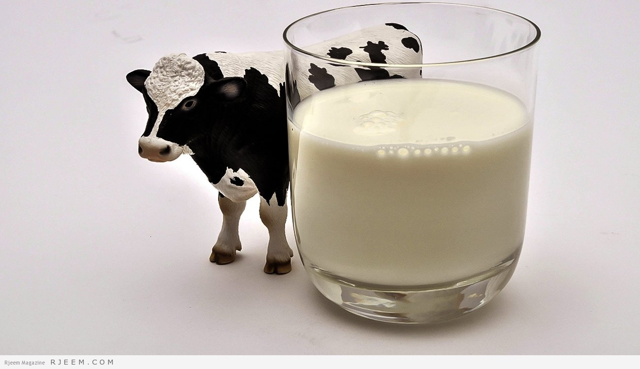 Photo of لهذا السبب حليب الأبقار قد يضر بالصحة