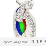 "Photo of بالفيديو .. تمرين ""21"" لبناء عضلات الصدر"