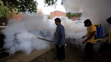 Photo of حمى الضنك تودي بحياة 24 شخصاً في فيتنام