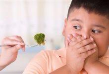 Photo of ما سبب عزوف الأطفال عن الخضروات؟