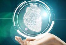 Photo of الخلايا الجذعية المأخوذة من قلب طفل حديث الولادة قد تجدد شباب قلب شخص مُسن!