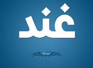 Photo of معنى اسم غند
