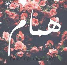 Photo of معنى اسم همام