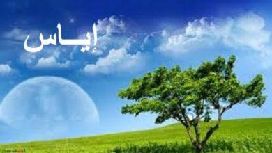 Photo of معنى اسم اياس في اللغة العربية