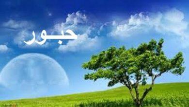 Photo of معنى اسم حبور