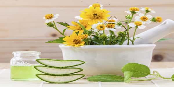 علاج ضربة الشمس بالأعشاب