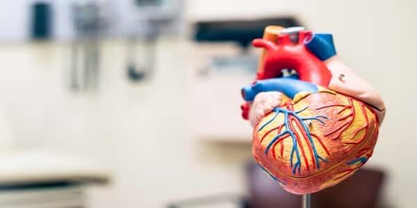 معلومات عن مرض القلب العصبي