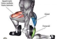 Photo of تمارين رياضية لتقوية عضلة الجلوتس
