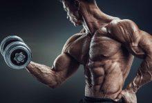 Photo of انقل حجم عضلات البايسيبس لمستوى آخر بتلك التمارين (فيديو)