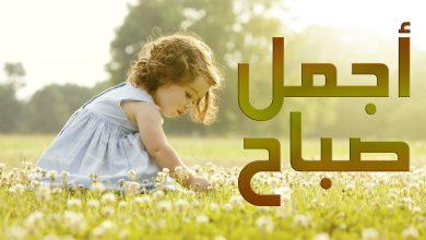 Photo of كلام عن الصبح روعة