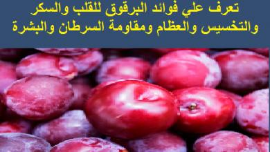 Photo of 6 فوائد صحية للبرقوق
