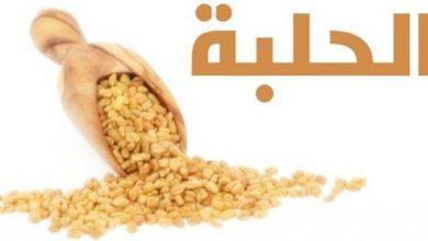 Photo of فوائد الحلبة للبشرة ماسكات طبيعية
