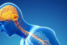 Photo of أمراض الجهاز العصبي والوقاية منها باستخدام الاعشاب الطبيعية