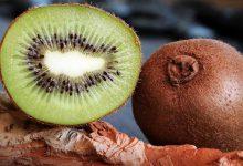 Photo of تجنب الأمراض مع ثمرة الكيوي : فوائد صحية عديدة