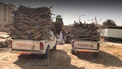 Photo of بعد توجيهات أمير الجوف.. ضبط سيارتين محملة بالحطب