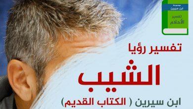Photo of تفسير حلم الشعر الأبيض في المنام