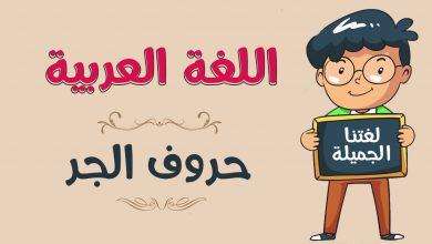 Photo of كل حروف الجر في اللغة العربية ومعانيها