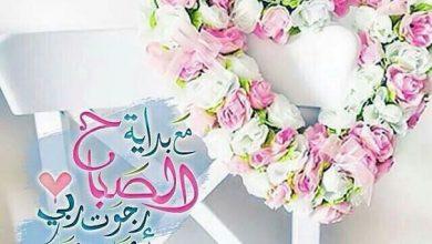 Photo of صور صباح الخير صباح السعادة صباح الرضا