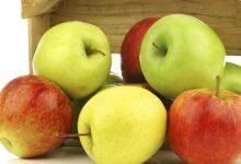 Photo of فوائد التفاح لمرضى السكري