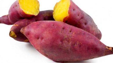 Photo of فوائد البطاطا لمرضى السكر