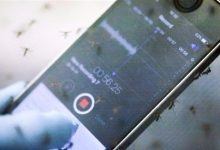 Photo of ابتكار تطبيق للمساعدة في مكافحة البعوض