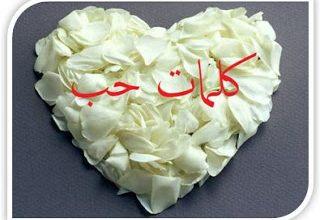 Photo of احلى كلمات حب