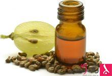 Photo of فوائد بذور العنب للصحة والبشرة والتخسيس