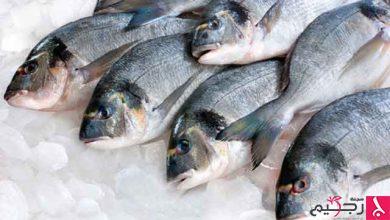Photo of تعرف على أضرار السمك
