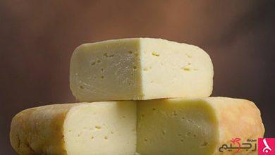 Photo of الجبن الرومي هل هو مفيد ام مضر؟