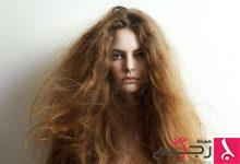 Photo of وصفة طبيعية لعلاج الشعر الجاف