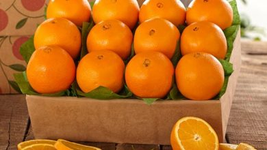 Photo of فوائد البرتقال للجسم