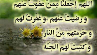 Photo of اجمل توبيكات عن الصبر